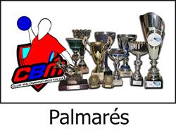 c_0000_palmares