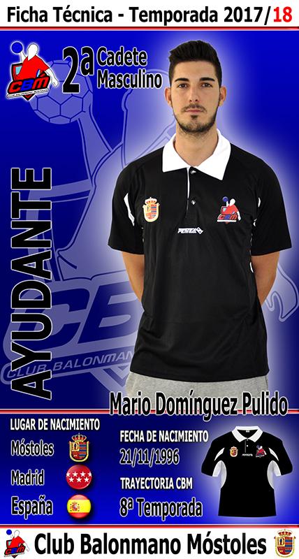 Mario Domínguez Pulido